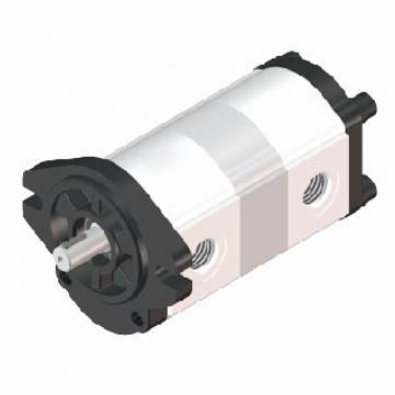 NACHI IPH-66B-100-125-11 Double Gear Pump